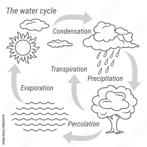u0026quot water cycle black and white  vector schematic