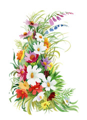 Hand drawn bouquet of flowers isolated on white background