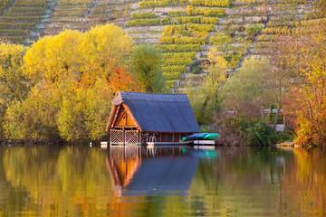 Romantischer Max-Eyth-See im Herbst, Stuttgart