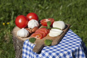 Ingredients for Caprese Italian salad on wood in nature with table-cloth