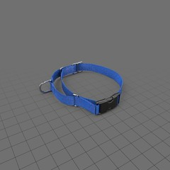 Dog collar with safety latch