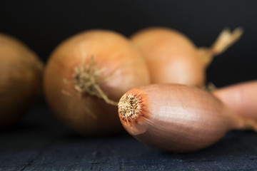 a fresh whole onion isolated on the black background