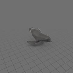 Stylized seal swimming