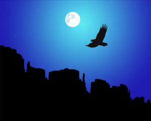 Landscape backgrounds. Western desert. Rocks. Flying eagle. Moonlight.