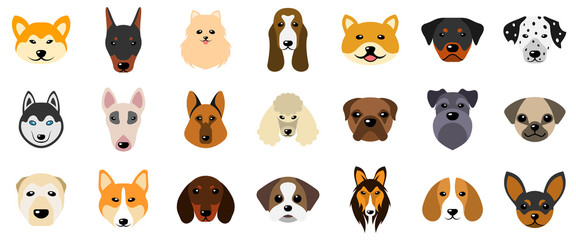 Set Heads of Dogs, Collection Different Breeds of Canines, Isolated on White Background