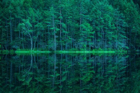 森林と湖 御射鹿池