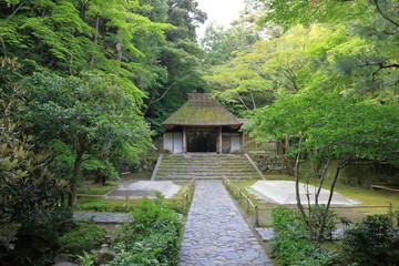 京都の寺の門