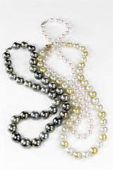 Beatiful pearl necklace isolated on a background