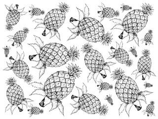 Hand Drawn of Fresh Sweet Pineapple Fruits Background