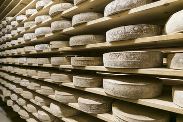 italian cheese cellar in mountain farm