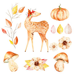 This magical autumn set included deer,autumn leaves,branche,flowers,mushrooms and ripe pumpkin.This collection perfect for decorating your autumn sketchbook,notepad,for create wreaths and patterns.