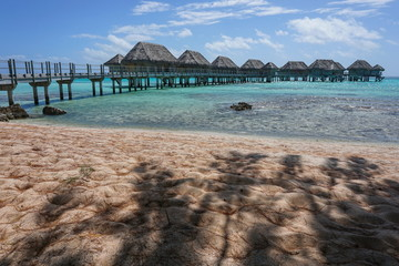 Tropical lagoon with overwater bungalows of a resort seen from a sandy beach with shade of trees, Tikehau atoll, Tuamotus, French Polynesia, south Pacific ocean