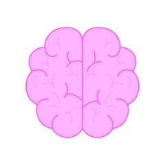 Isolated brain design