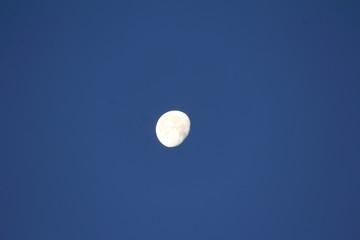 Mond vor blauem Hintergrund