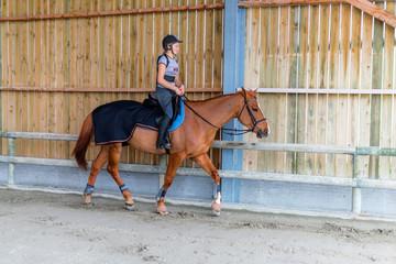 travailler son cheval
