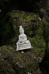 岩と緑 葉っぱ ブッダ こけ 仏教