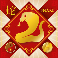 Charm with Chinese Zodiac Snake, Fire Element and Yin Symbol, Vector Illustration
