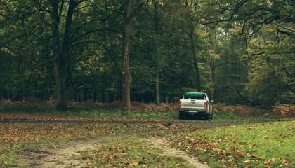 Pick-up truck parked in autumn forest. Wildlifepark Dulmen, Germany.