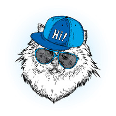 A beautiful cat in a cap and glasses. Vector illustration for a postcard, poster or print. Clothes and accessories.
