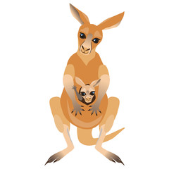 Cartoon Kangaroo and Joey