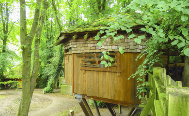 Alnwick wooden Treehouse, green trees, Alnwick Garden,  in the English county of Northumberland, UK