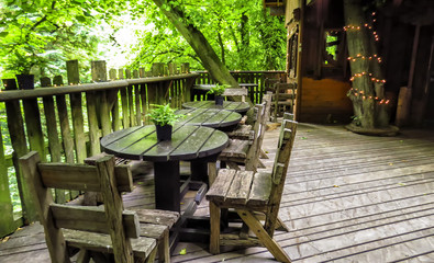 Alnwick wooden Treehouse, green trees and wooden tables, Alnwick Garden,  in the English county of Northumberland, UK
