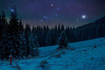 Beautiful night in winter. Mountain landscape
