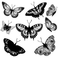 Set of hand drawn sketch style butterflies. Vector illustration isolated on white background.