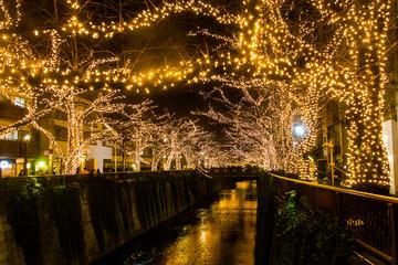 目黒川、金のクリスマスイルミネーション