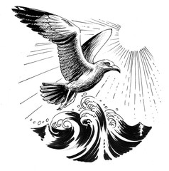Ink illustration of a flying seagull