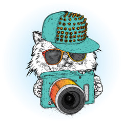A beautiful cat in a cap, glasses and with a camera. Vector illustration for a postcard, poster or print. Clothes and accessories.