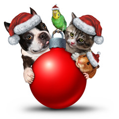 Christmas Pets Decoration