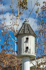 Wooden bird feeder in the garden