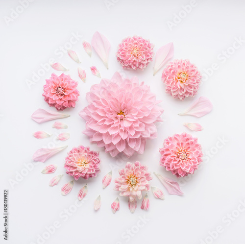 Round pink pale flowers composition with petals on white desktop round pink pale flowers composition with petals on white desktop background flat lay top mightylinksfo