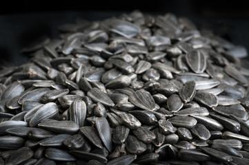 Black sunflower seeds texture on dark background