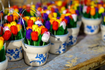 traditional Wooden tulips in little buckets in souvenir shop