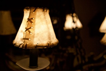 Hide Lampshade Light Background 2