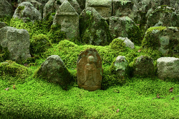 stone Buddhas and moss garden, Kyoto Japan