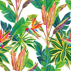 Tropical jungle birds of paradise and leaves seamless