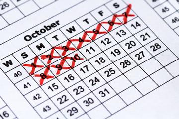 Pregnancy calendar. Macro view precise calendar