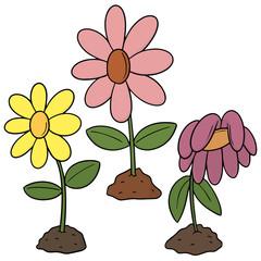 vector set of flower
