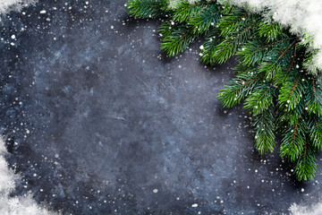 Christmas fir tree and snow