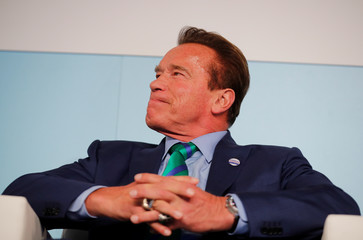 Former California governor and 'Mr. Universe' Arnold Schwarzenegger look on during the COP23 UN Climate Change Conference 2017, hosted by Fiji but held in Bonn