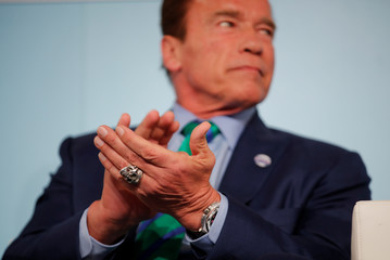 Former California governor and 'Mr. Universe' Arnold Schwarzenegger applauds during the COP23 UN Climate Change Conference 2017, hosted by Fiji but held in Bonn