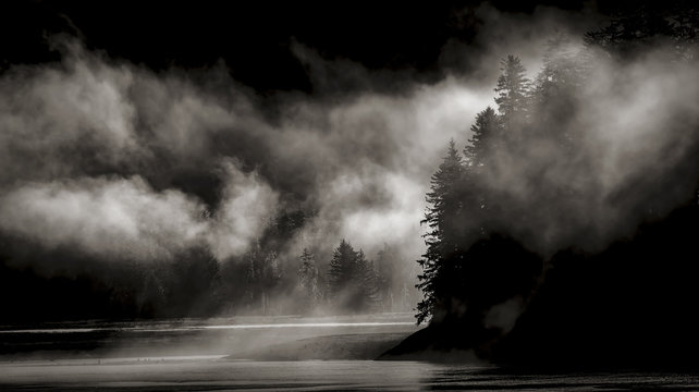light and shade with fog in the wilderness of Alaska
