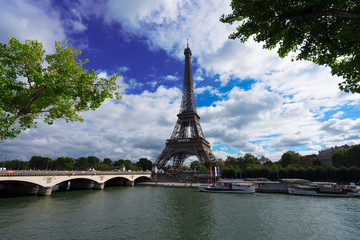 Eiffel Tower and Pont dIena with tree, Paris France