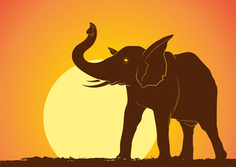 Wild Elephant Silhouette in Sunset Vector