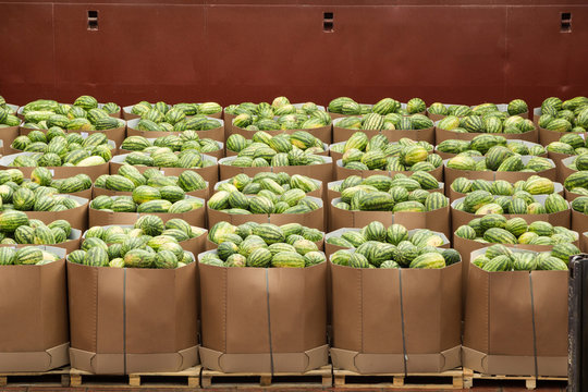Transportation, transportation of watermelons in boxes to the store or warehouse.