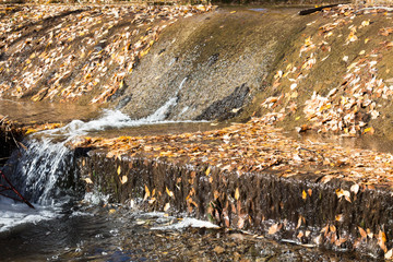 Water flowing over a concrete weir full of dry leaves