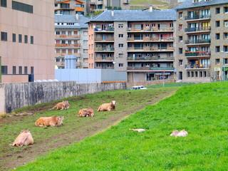 Encamp. Arquitectura de piedra en Encamp, Andorra